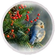 Holiday Blue Bird Round Beach Towel