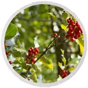 Round Beach Towel featuring the photograph Holly With Berries by Chevy Fleet