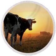 Holstein Friesian Cow Round Beach Towel