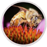Honey Bee At Work Round Beach Towel