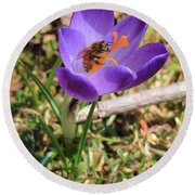 Round Beach Towel featuring the photograph Honey Bee On Crocus  by Rick Morgan