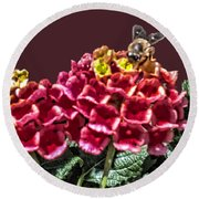 Honey Bee On Flower Round Beach Towel by Daniel Hebard