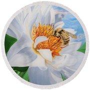 Flygende Lammet Productions     Honey Bee On White Flower Round Beach Towel