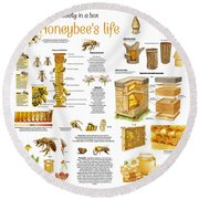 Honey Bees Infographic Round Beach Towel by Gina Dsgn