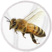 Honey Bound Round Beach Towel