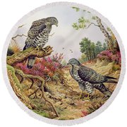 Honey Buzzards Round Beach Towel by Carl Donner
