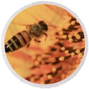 Round Beach Towel featuring the photograph Honeybee And Sunflower by Chris Berry