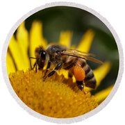 Round Beach Towel featuring the photograph Honeybee At Work by Rona Black