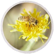 Round Beach Towel featuring the photograph Honeybee by Nikki McInnes
