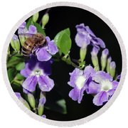 Round Beach Towel featuring the photograph Honeybee On Golden Dewdrop II by Richard Rizzo