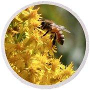 Honeybee On Showy Goldenrod Round Beach Towel
