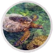 Honu Round Beach Towel