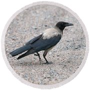 Round Beach Towel featuring the photograph Hooded Crow by Jouko Lehto