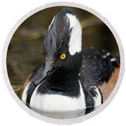 Hooded Merganser Hanging Out Round Beach Towel