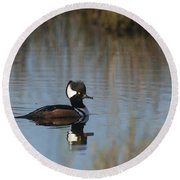 Hooded Merganser In The Early Morning Light Round Beach Towel