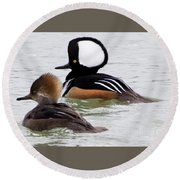 Hooded Mergansers Round Beach Towel