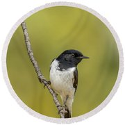 Hooded Robin Round Beach Towel