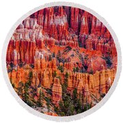 Hoodoo Forest Round Beach Towel