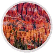Hoodoo Forest Round Beach Towel by David Cote