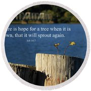 Hope For A Tree Round Beach Towel by James Eddy