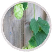 Hops On Fence Round Beach Towel