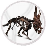 Horned Dinosaur Skeleton Round Beach Towel
