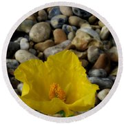 Horned Poppy And Pebbles Round Beach Towel