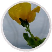 Horned Poppy Round Beach Towel