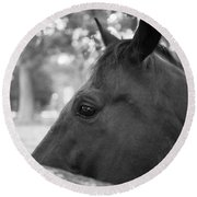Horse At Fence Round Beach Towel