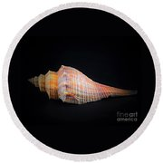 Horse Conch Round Beach Towel by Ray Shrewsberry