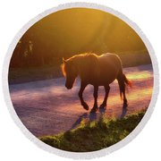 Horse Crossing The Road At Sunset Round Beach Towel