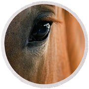 Horse Eye Round Beach Towel