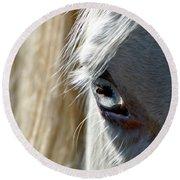 Horse Eye Round Beach Towel