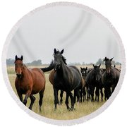 Horse Herd On The Hungarian Puszta Round Beach Towel