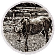 Round Beach Towel featuring the photograph Horse In Black And White by Annie Zeno