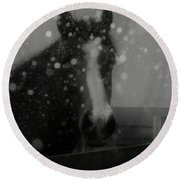 Horse In Falling Snow Round Beach Towel
