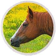 Horse In Yellow Field Round Beach Towel by Wendy McKennon