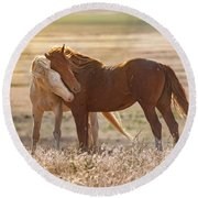 Horse Love Round Beach Towel