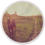 Horse Round Beach Towel by Lyn Randle