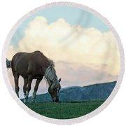 Horse - Rila Big Sky Round Beach Towel