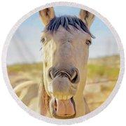 Horse Talk #2  Round Beach Towel