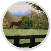 Round Beach Towel featuring the photograph Horse With A View by Gary Hall