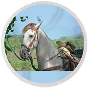 Round Beach Towel featuring the photograph Horse With No Name by Jim Walls PhotoArtist