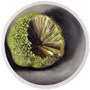 Round Beach Towel featuring the painting Horseapple by Randol Burns