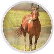 Horseing Around Round Beach Towel