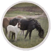 Horses And Colt  Round Beach Towel