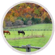 Horses Contentedly Grazing In Fall Pasture Round Beach Towel