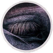 Horses Eye-color Round Beach Towel
