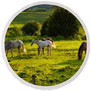 Horses Grazing In Evening Light Round Beach Towel