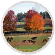 Horses Grazing In The Fall Round Beach Towel by Sumoflam Photography